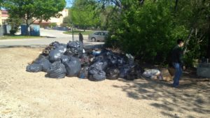 River Clean Up 3